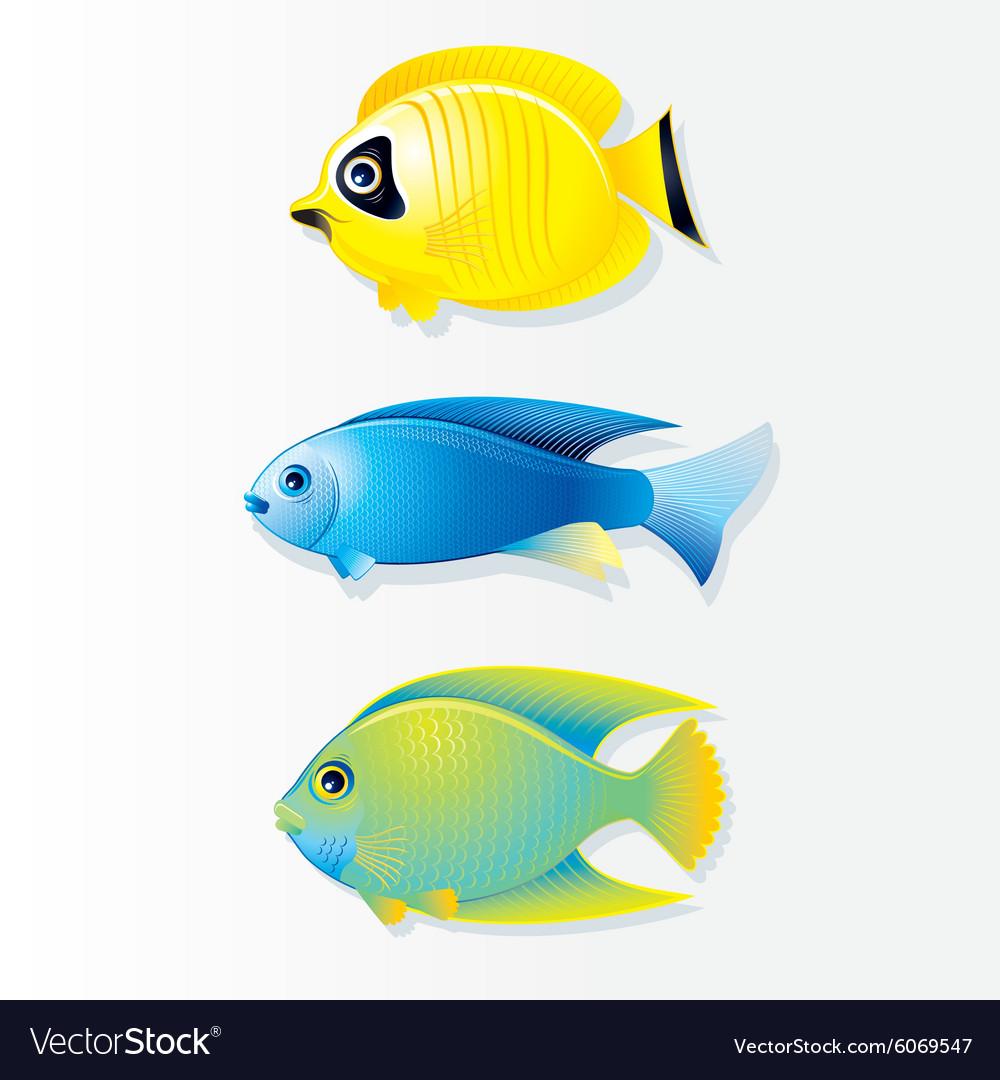 Cartoon Coral reef Fish Image