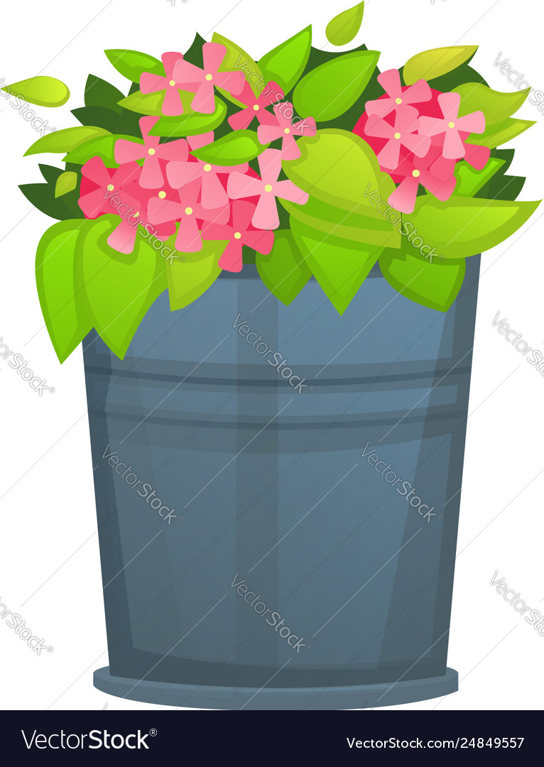 Pink Flower With Green Leaf In Metallic Bucket Pot