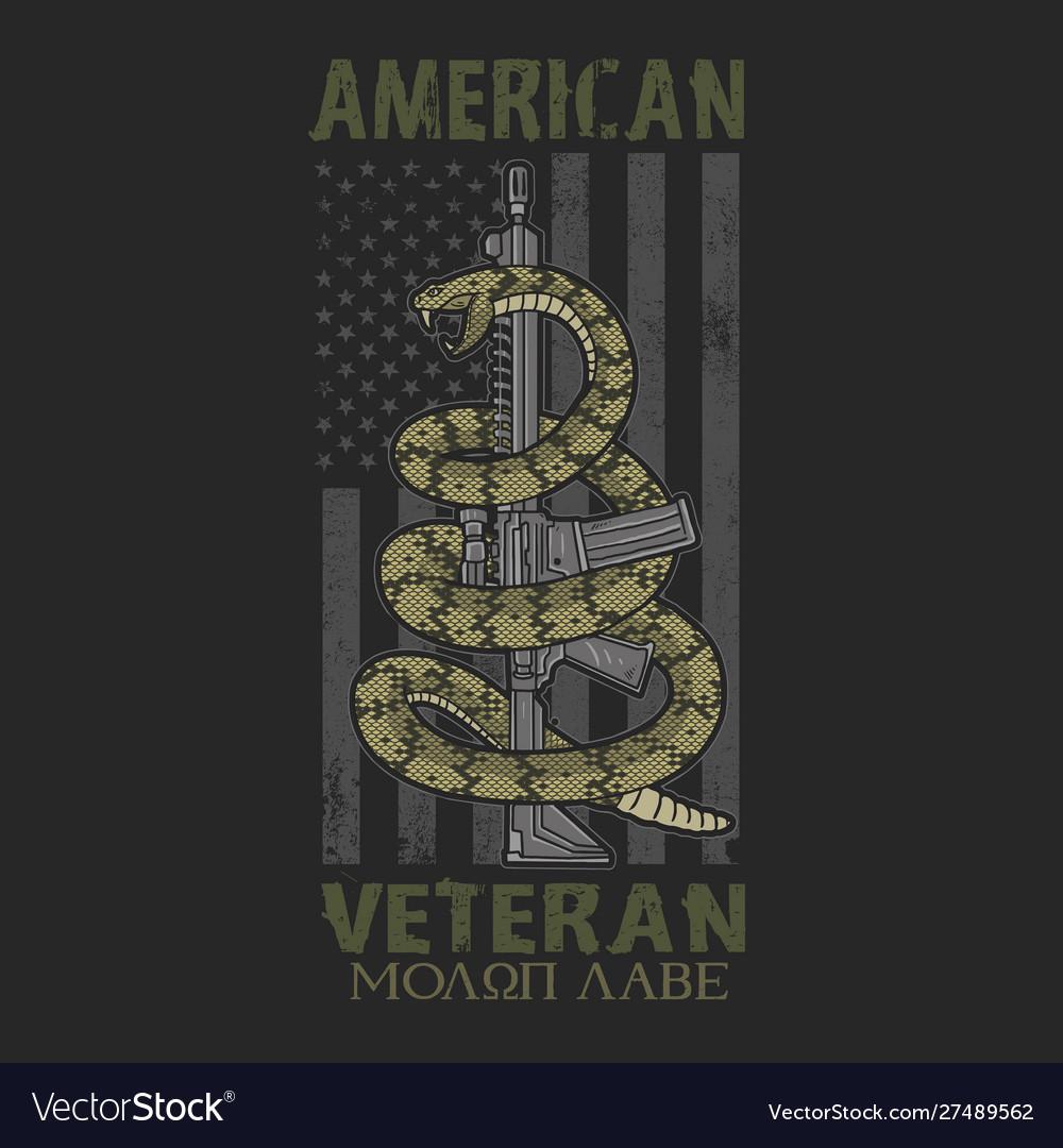 American spirit patriotic veteran