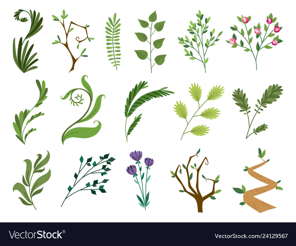 Designer elements set collection of green