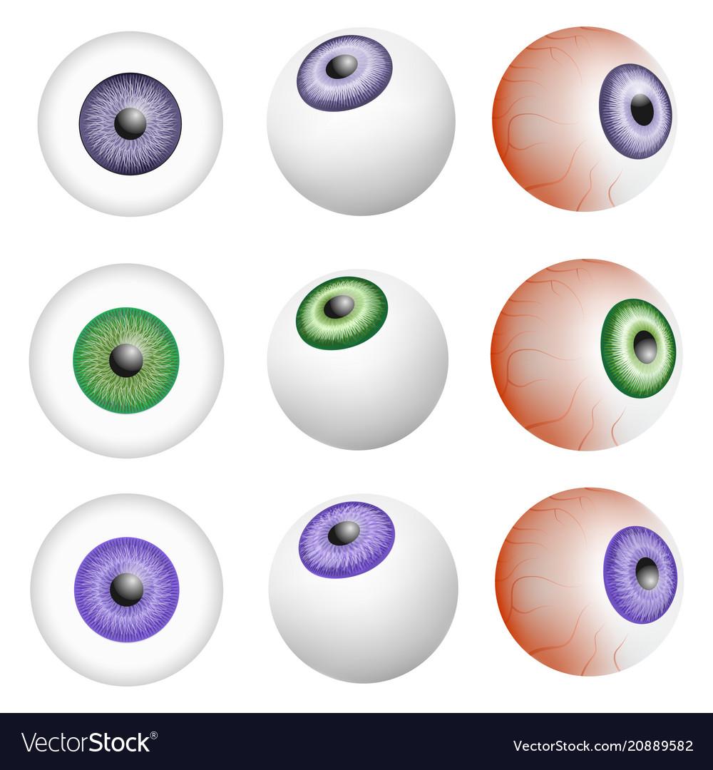 Eye ball anatomy mockup set realistic style Vector Image