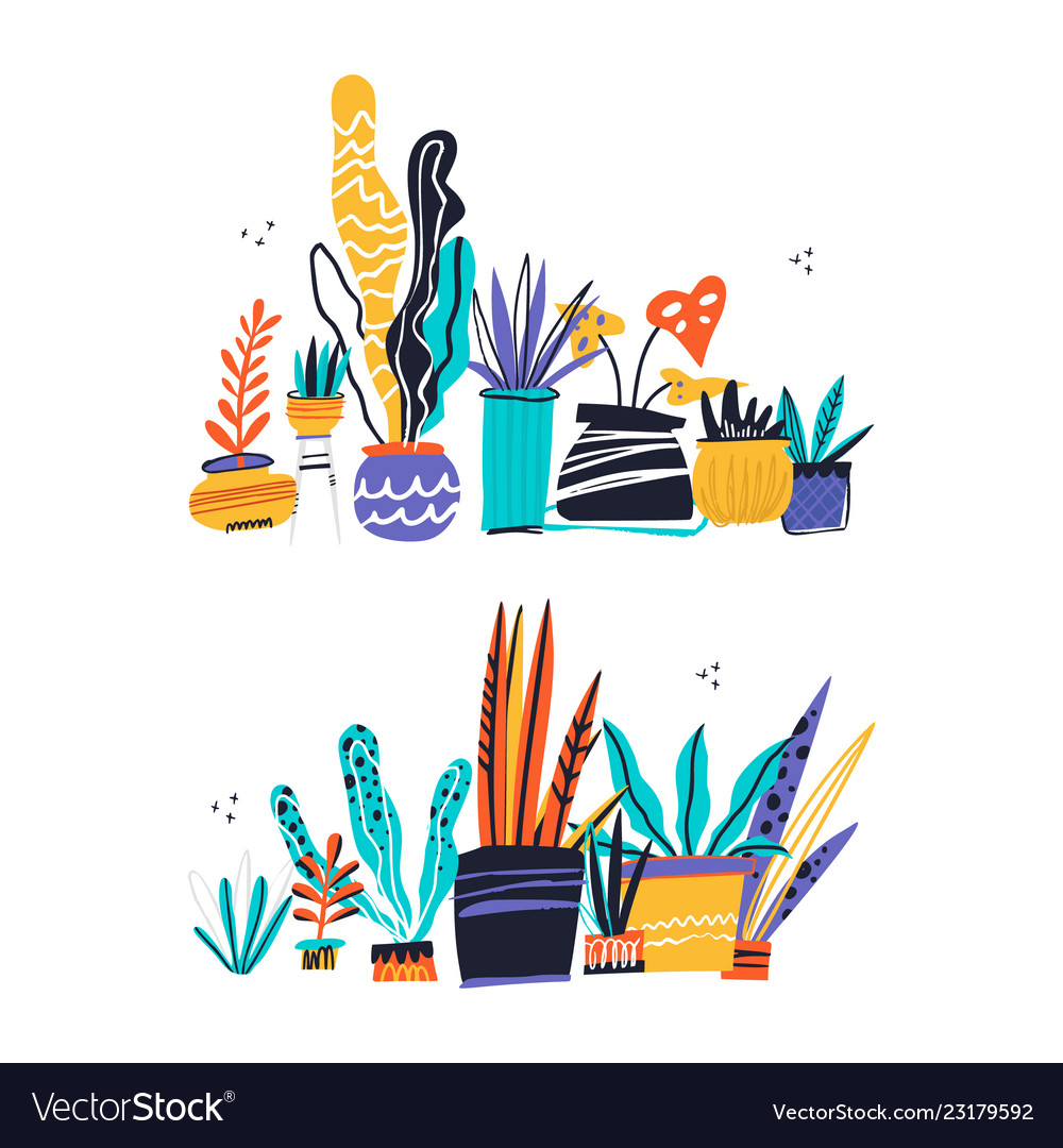 House plants color hand drawn