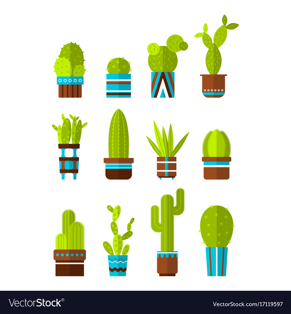 Set of cacti succulents flat color icons