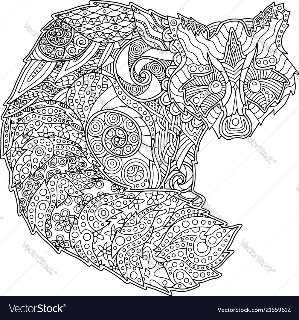 Adult Coloring Book Page With Funny Raccoon Vector Image