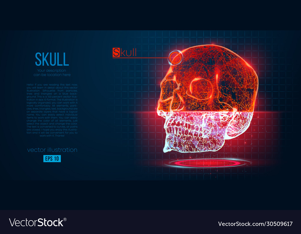 Abstract silhouette polygonal skull human