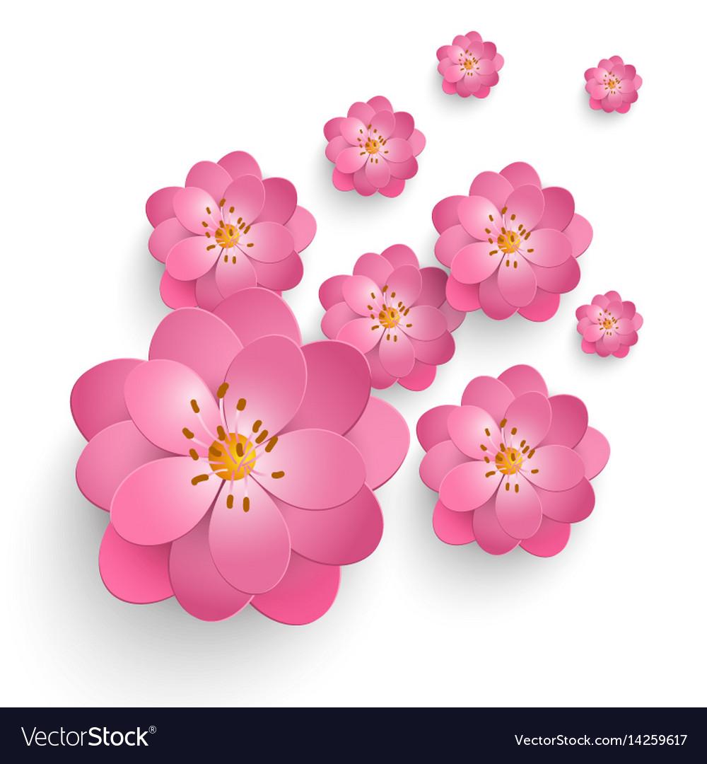 Paper Cut Sakura Flowers Floral Royalty Free Vector Image