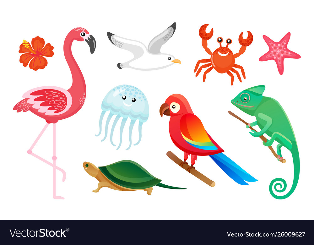 Exotic wild birds and animals summer symbols