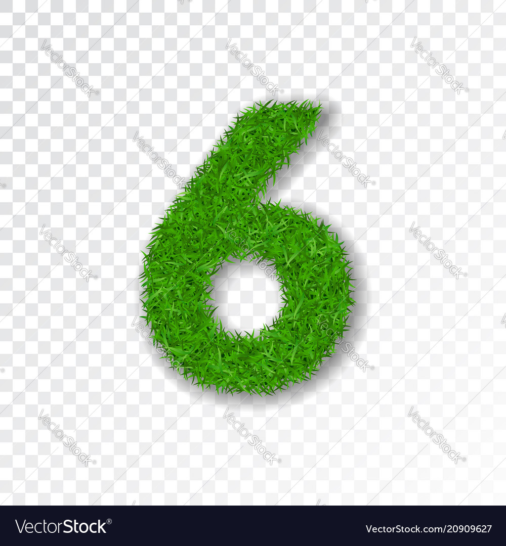 Grass number six green number six isolated on