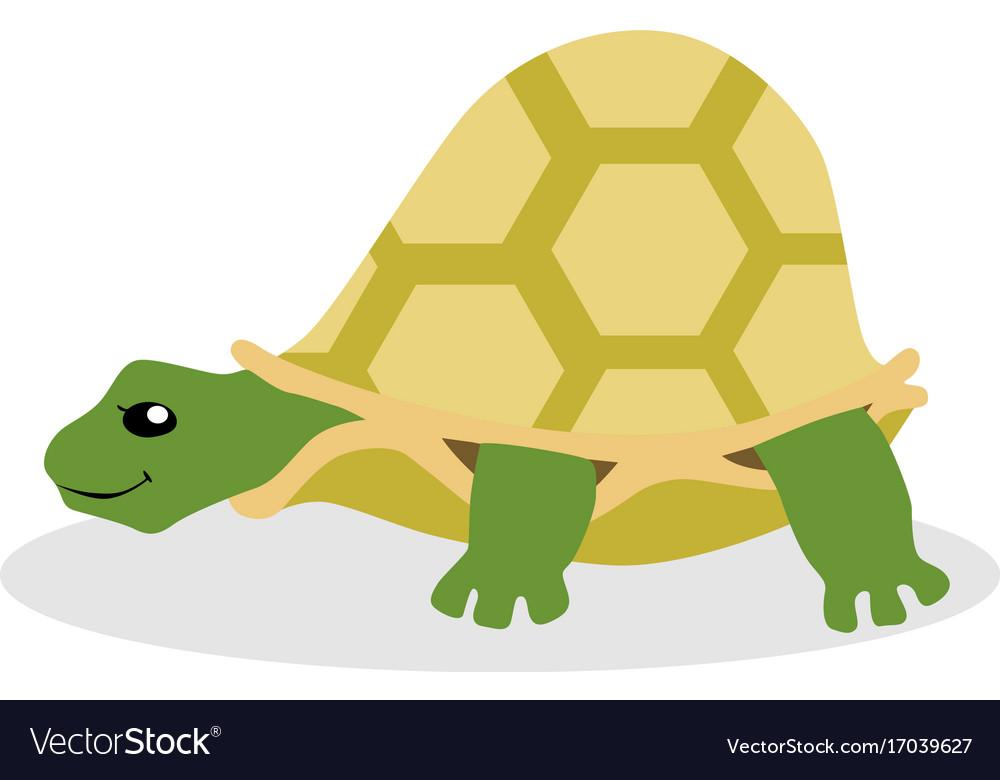 Turtle flat