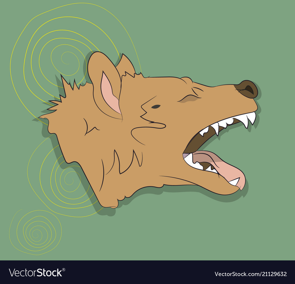 Hyena portrait on a colored background