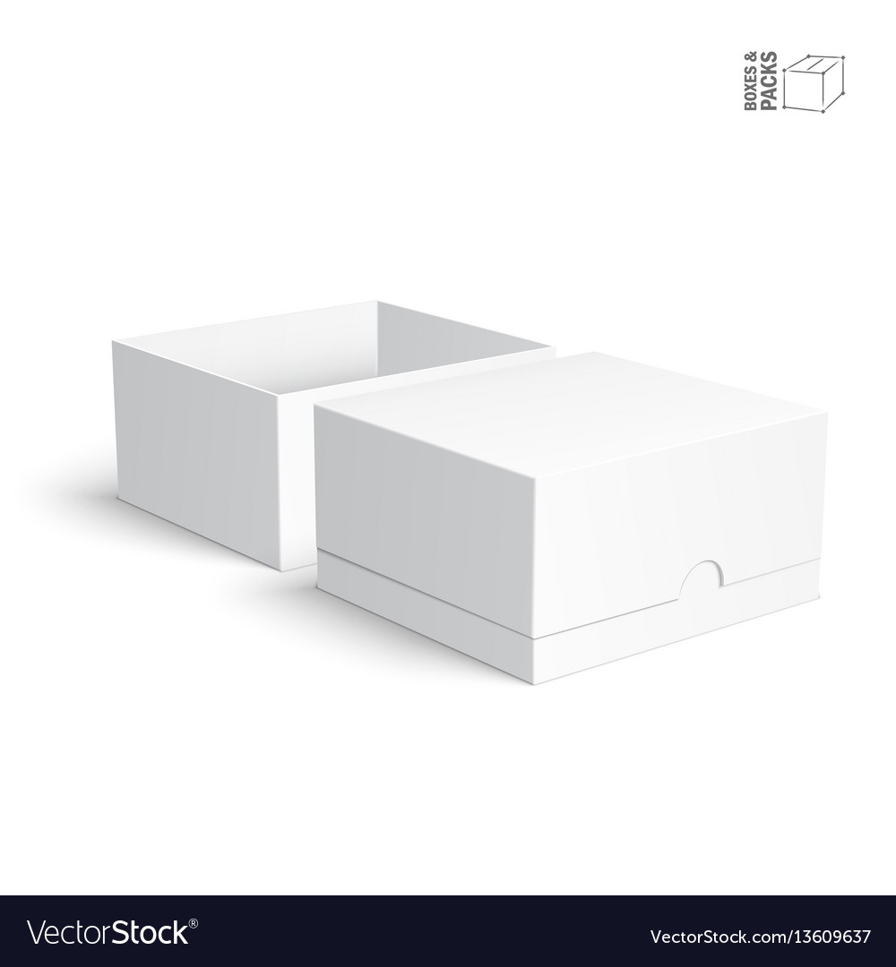 Blank Paper Or Cardboard Boxes Templates On White Vector Image