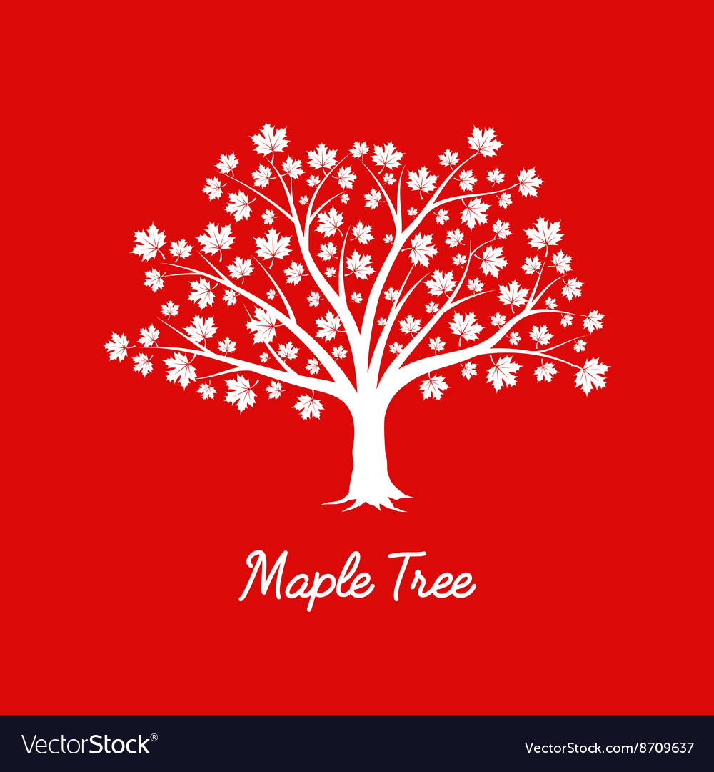 White maple tree silhouette on red background