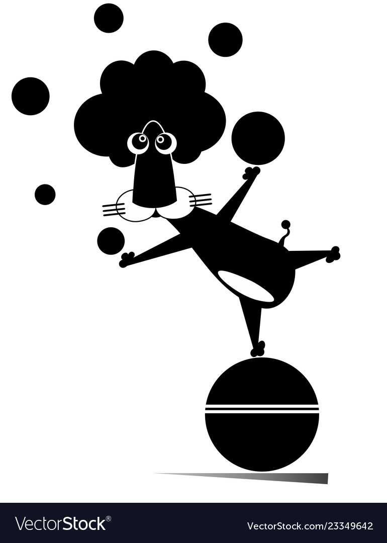 Cute Seal Juggling Balls On Stage, Funny Animal Performing In.. Royalty Free  Cliparts, Vectors, And Stock Illustration. Image 124856726.