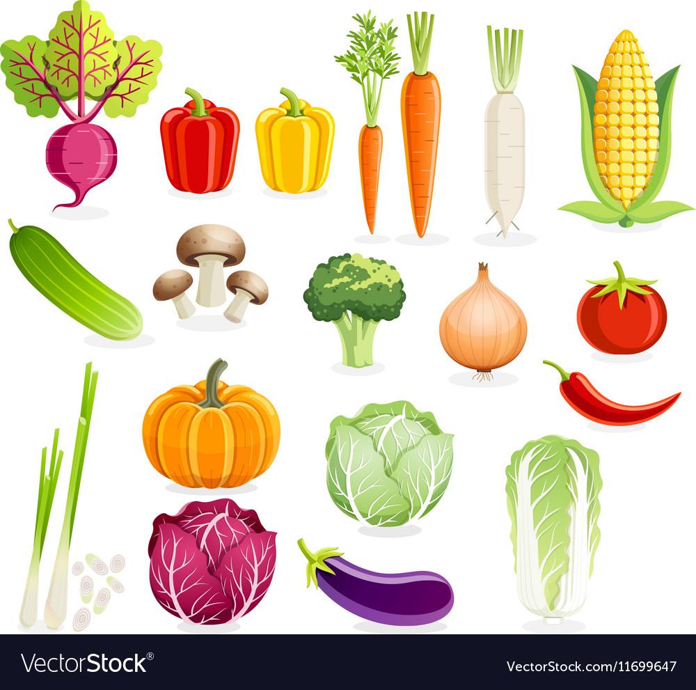 Set of vegetables vector image