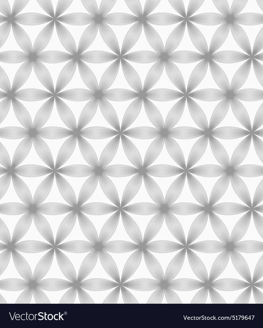 Slim gray geometric striped flower vector image