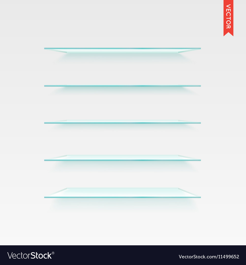 Set of Glass Shelves Isolated on the Wall vector image