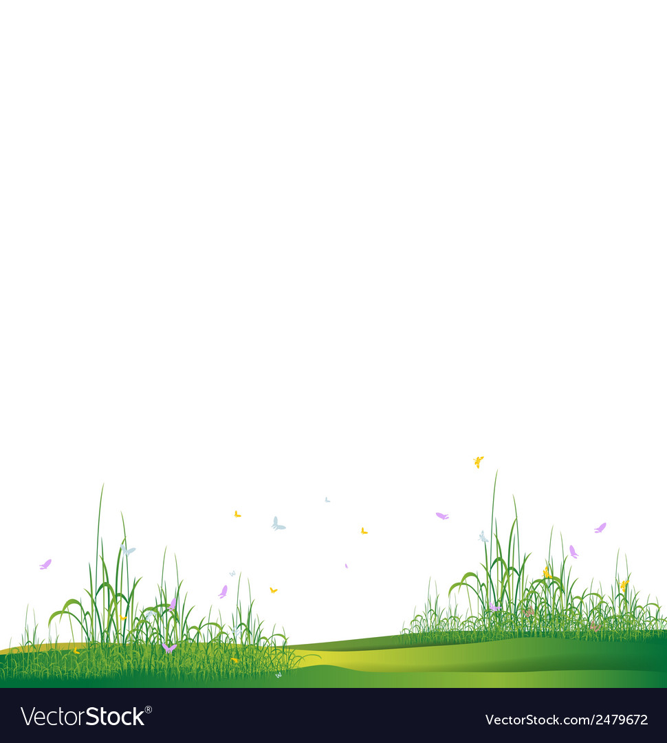 Beauty grass silhouette vector image