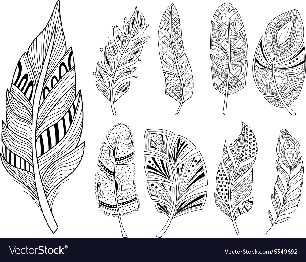 Ornamental Feathers in Handdrawn Style Vestor