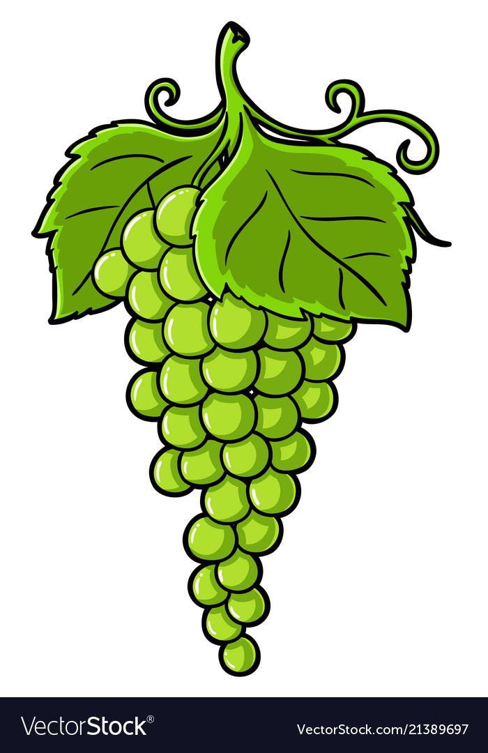 Cartoon green grapes Royalty Free Vector Image