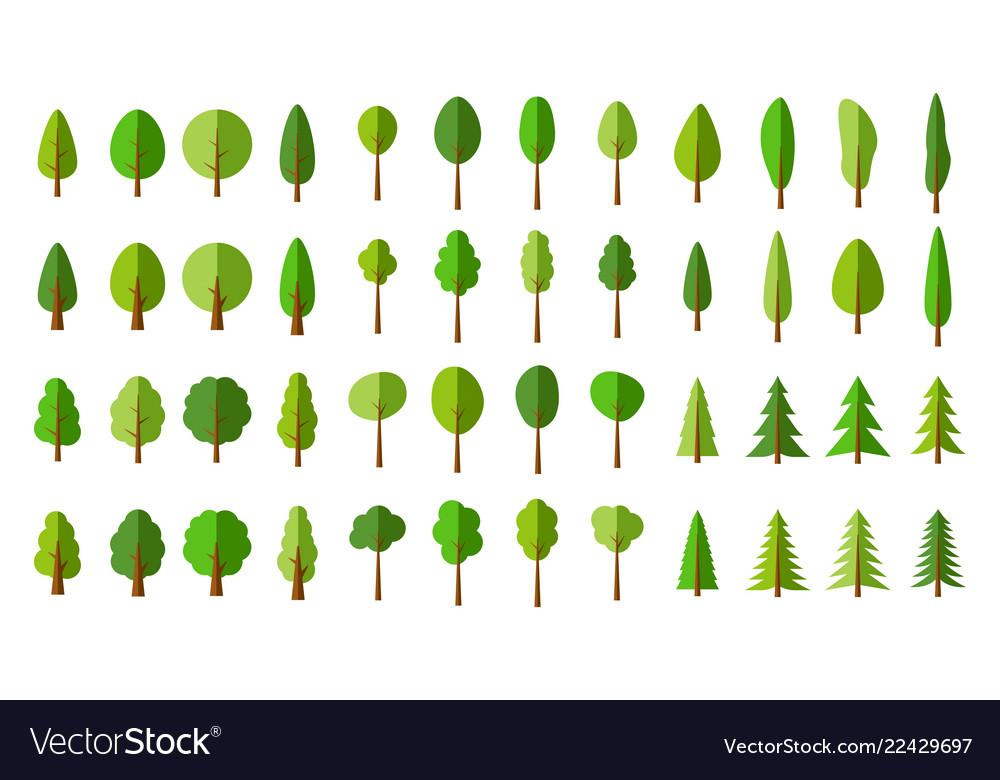 Seamless pattern green pine trees