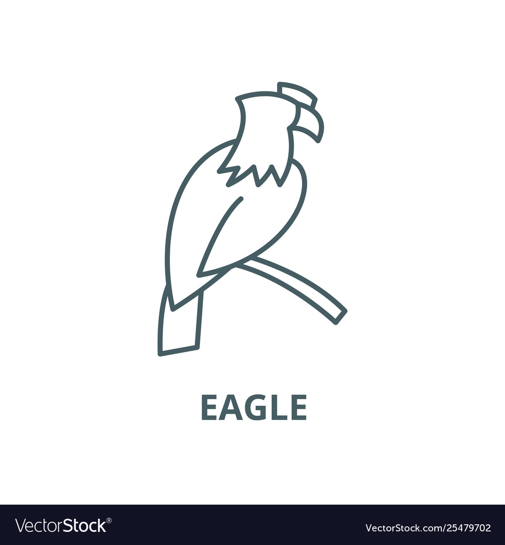 Eagle line icon linear concept outline