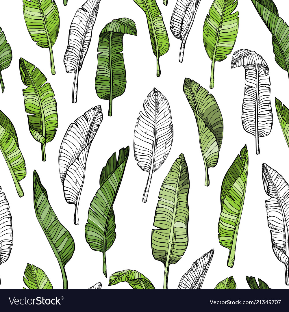 Seamless leaves pattern with tropical leaves