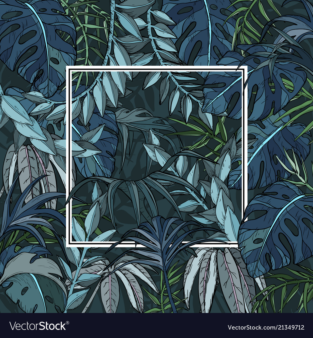 Background with jungle foliage and white frame