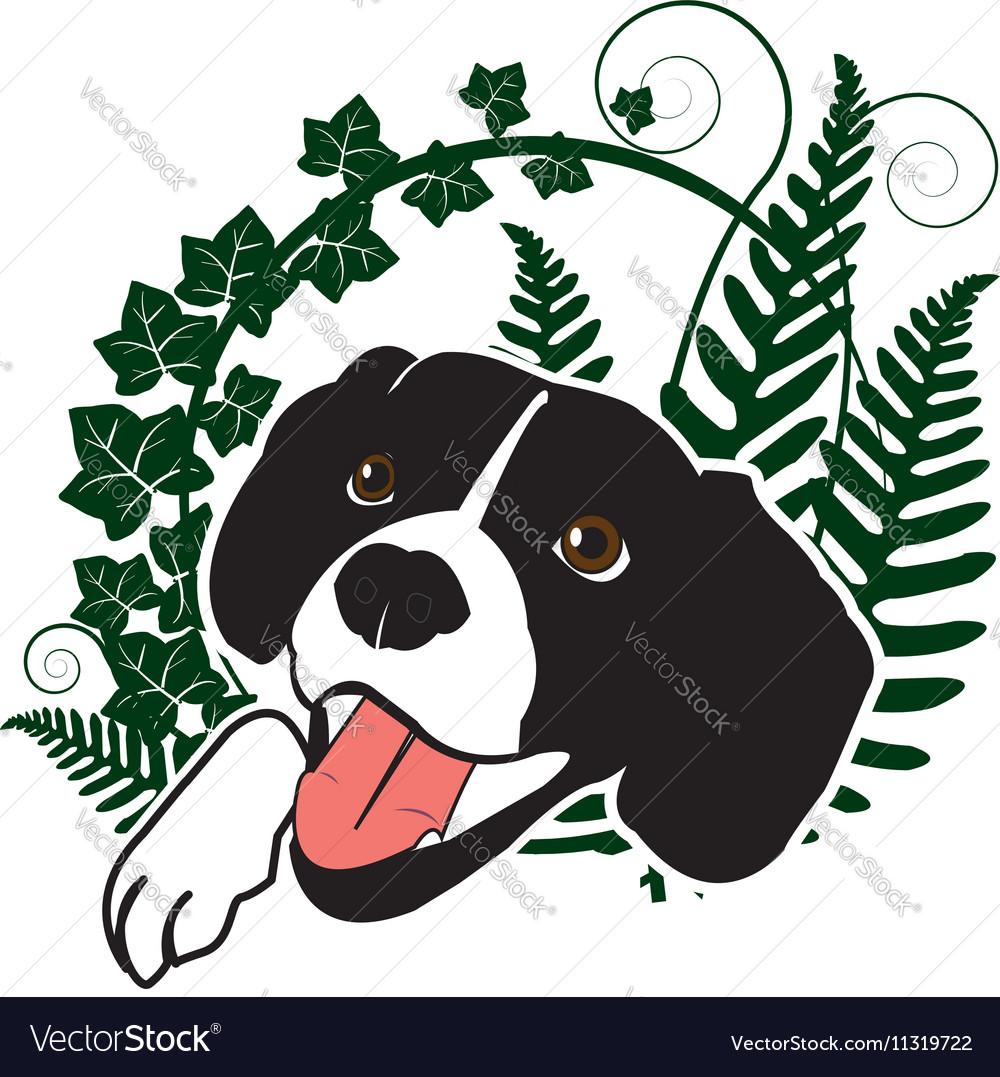 Cute happy dog in the ferns