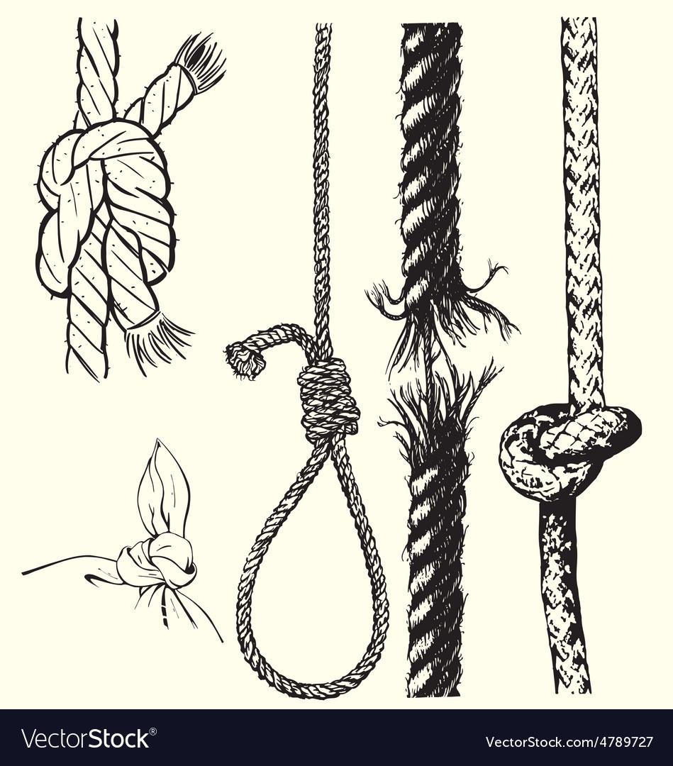 Knots and ropes