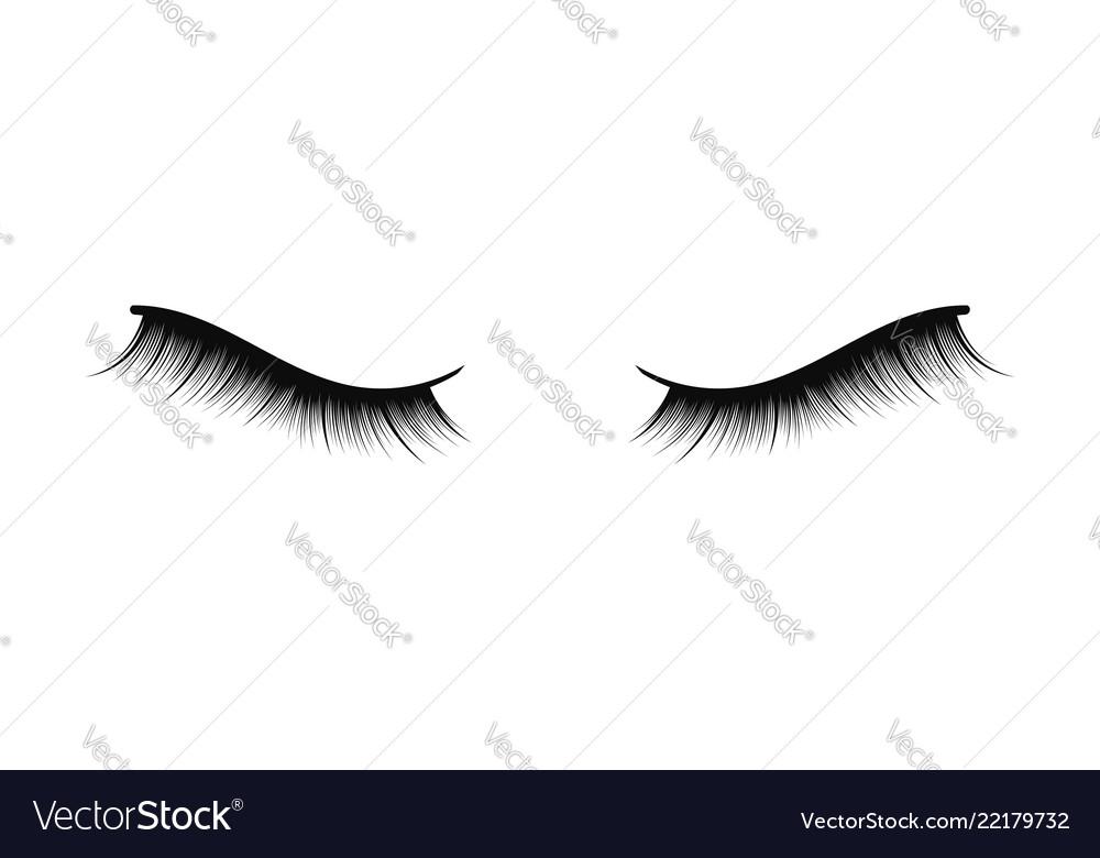 Lush black lashes on white background for makeup