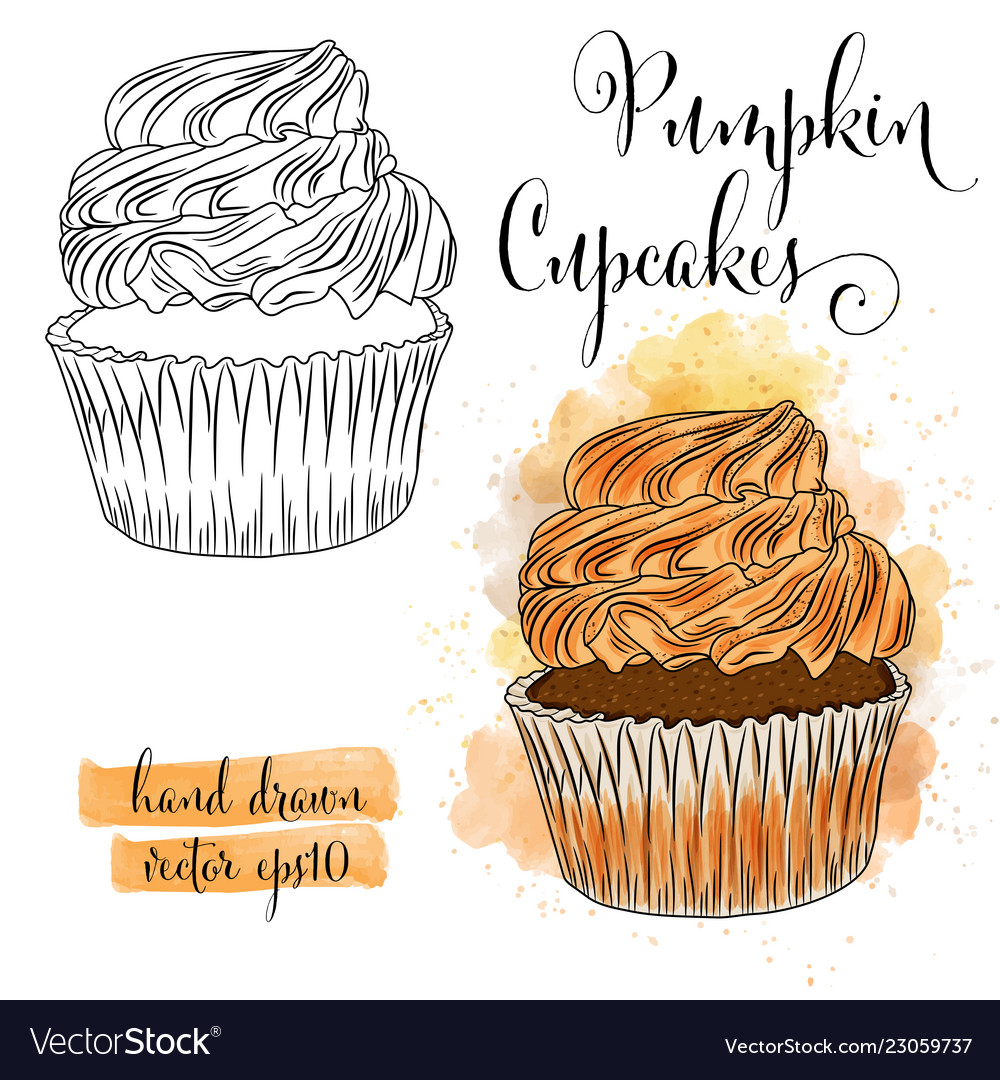 Beautiful hand drawn watercolor cupcakes with