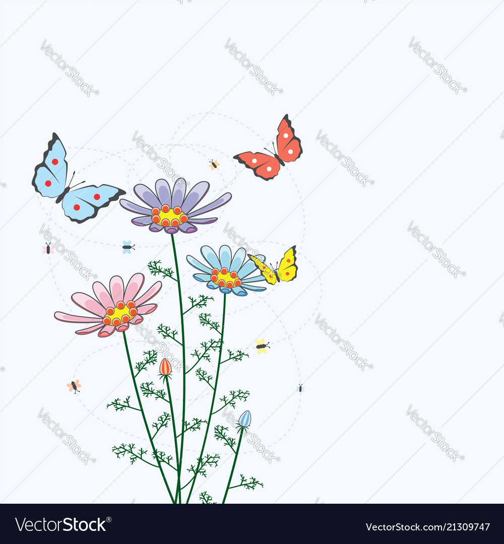 Camomile flowers and butterflies