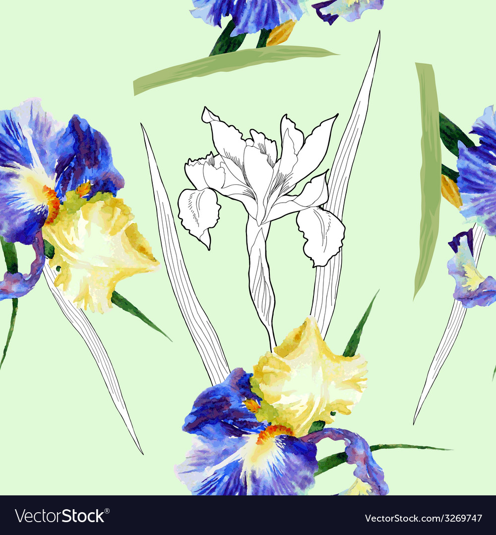 Seamless pattern with watercolor irises-04