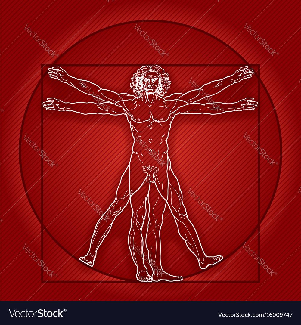The vitruvian man homo vitruviano red version vector image