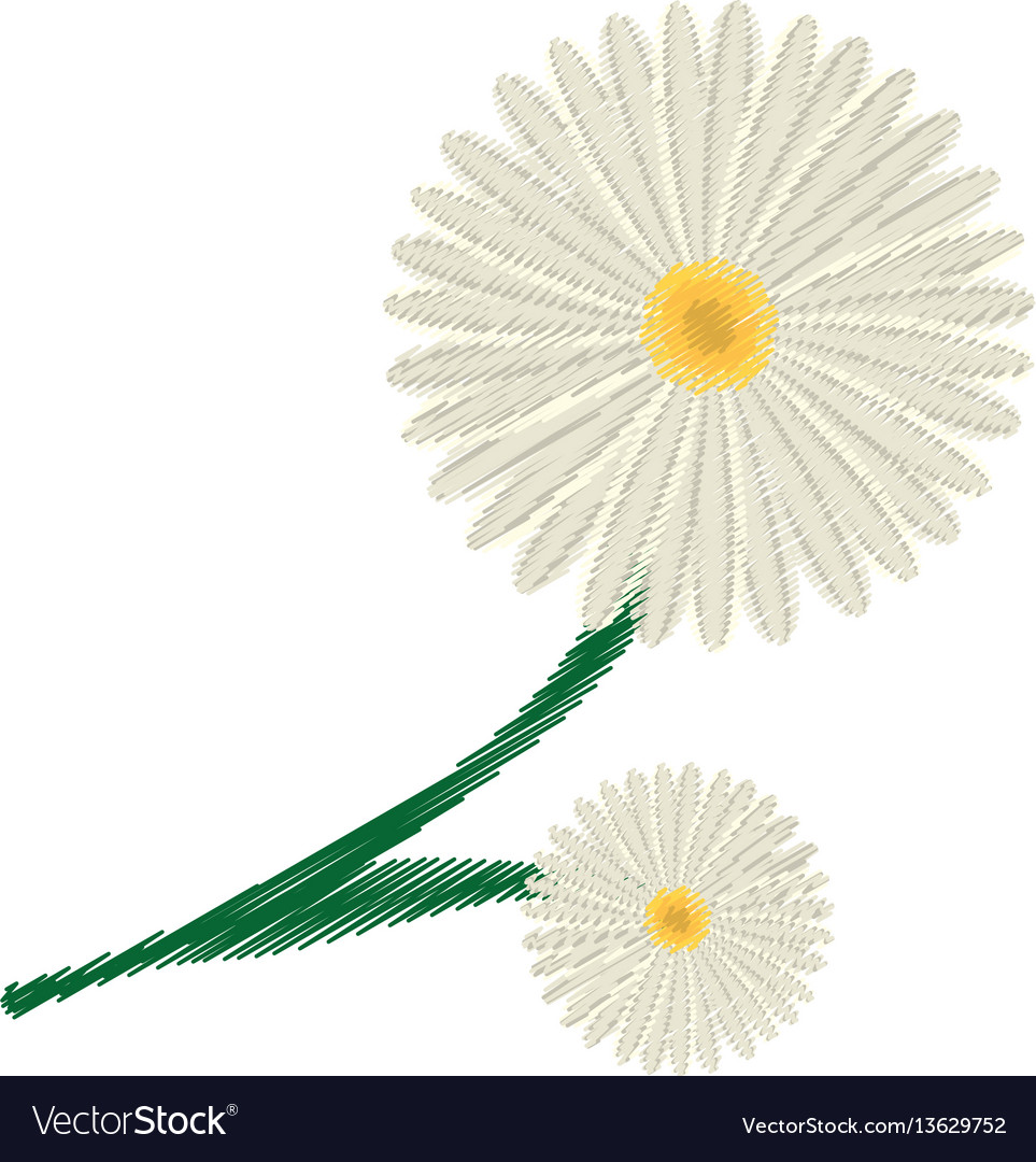 Drawing Daisy Flower Ornament Image Royalty Free Vector