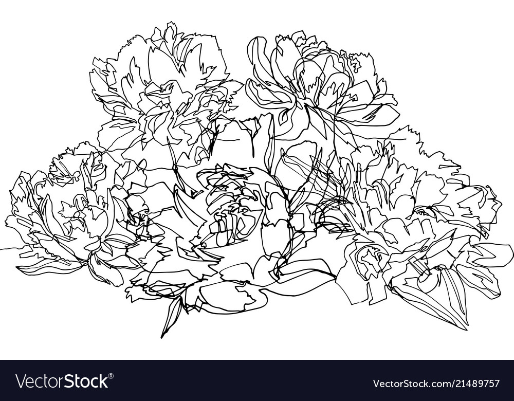Bouquet of peonies five large beautiful flowers