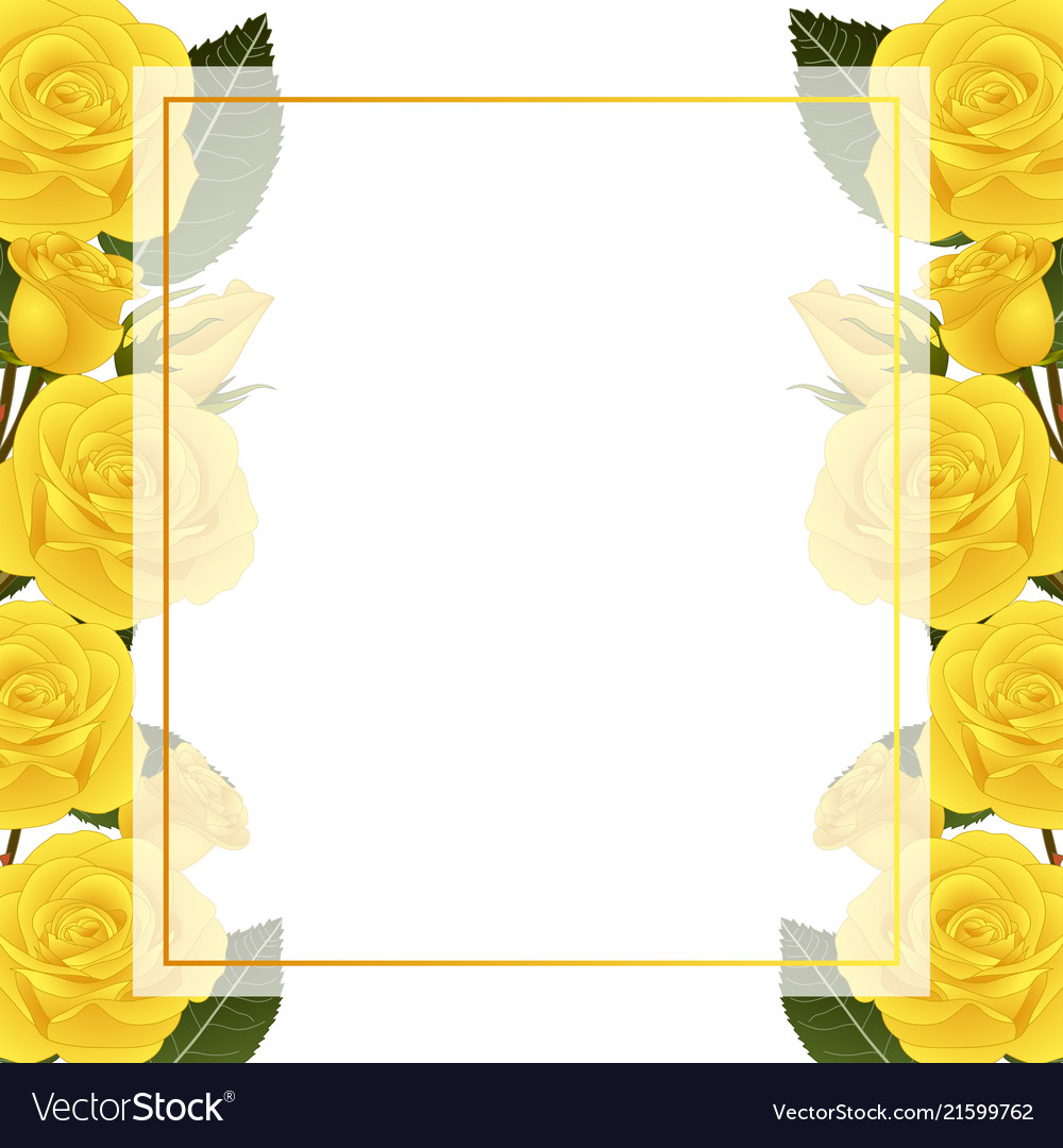 yellow rose flower banner card border royalty free vector vectorstock