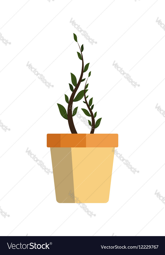 Flower icon logo in pot nature spring plant