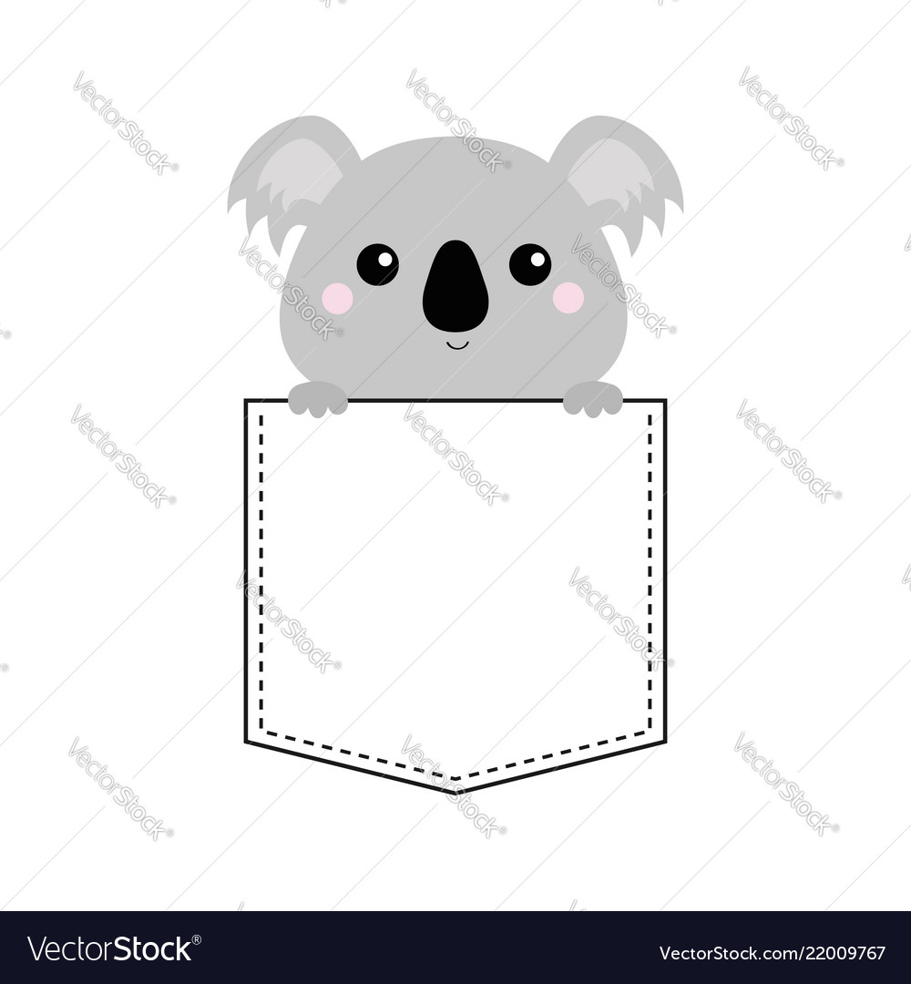 Koala bear head face sitting in the pocket