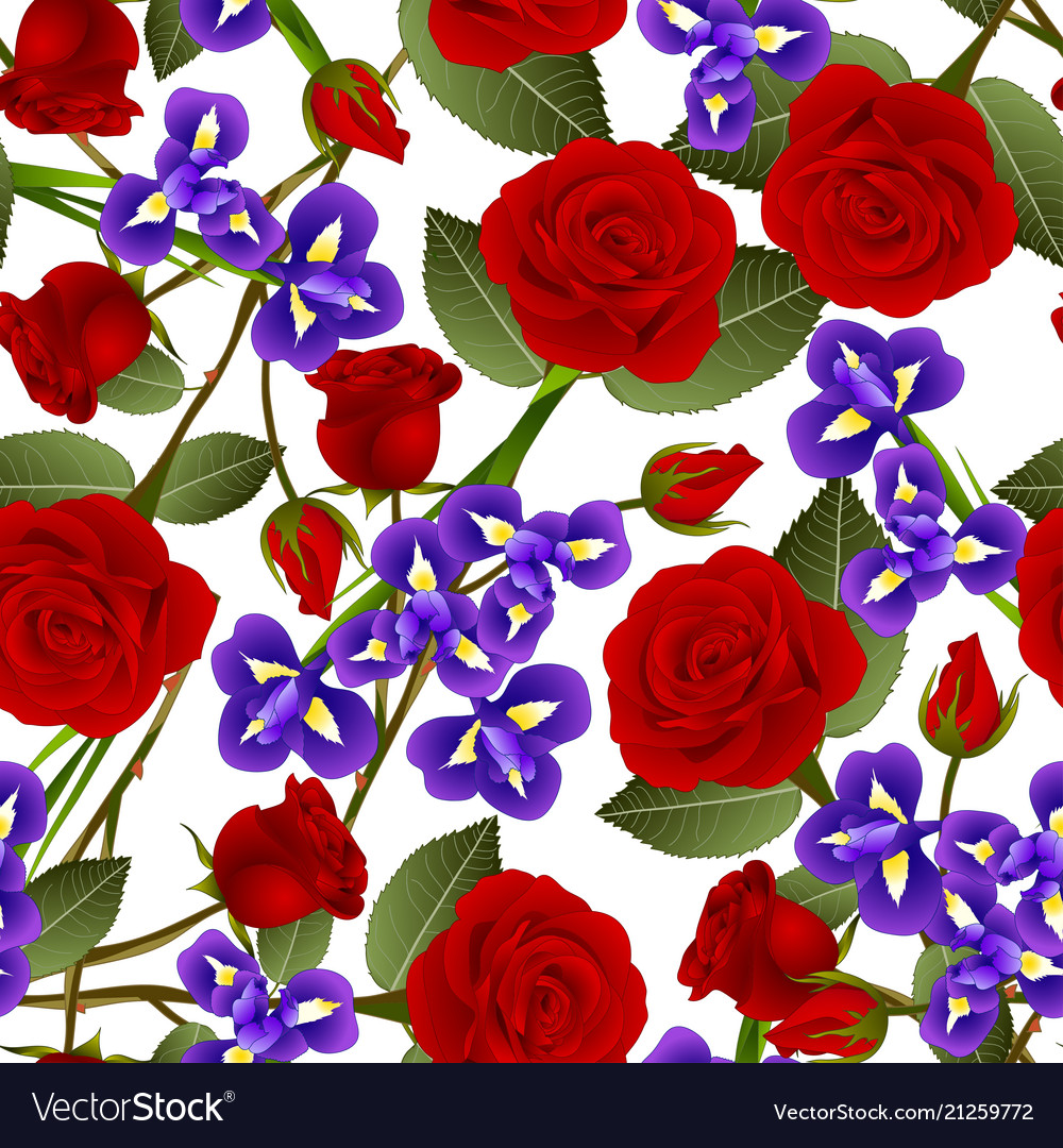Beautiful red rose and iris flower on white