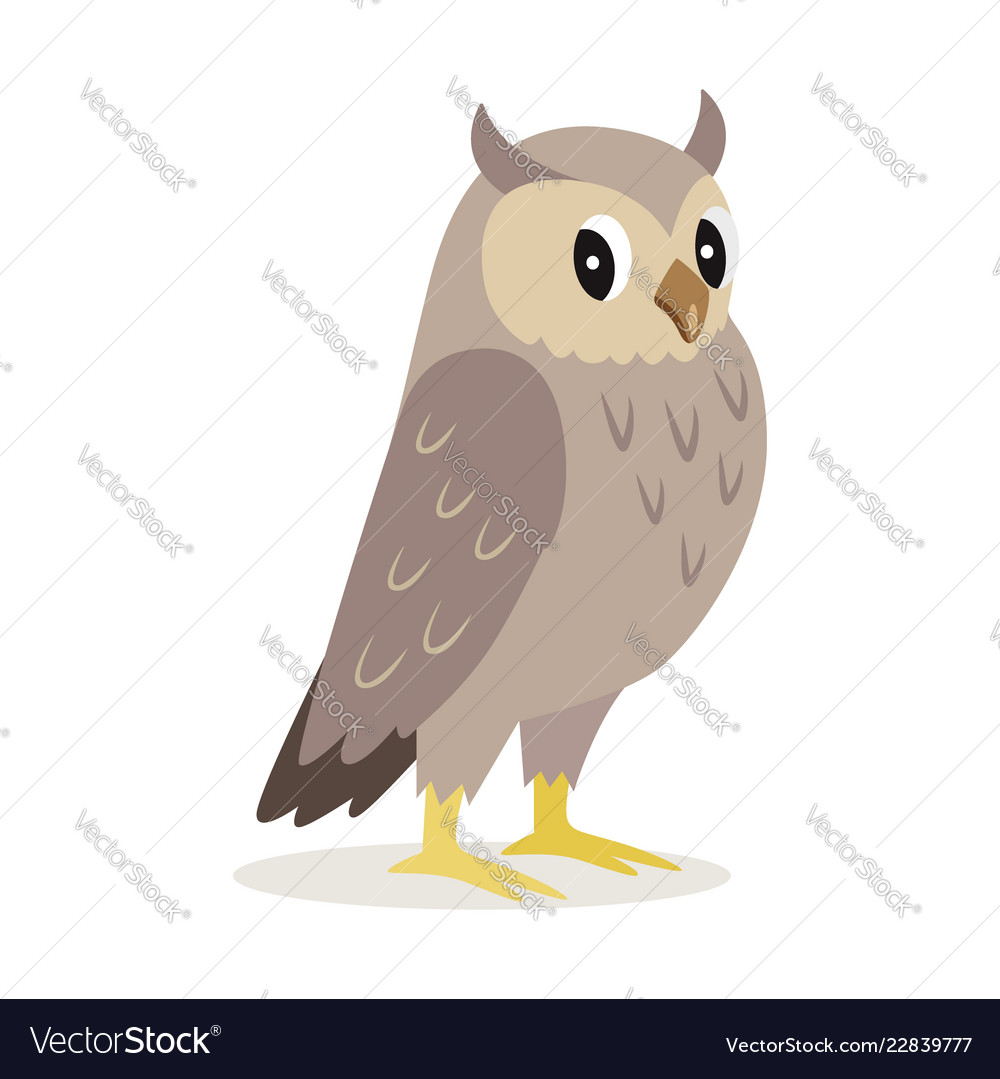 Icon of cute owl with big eyes forest animal