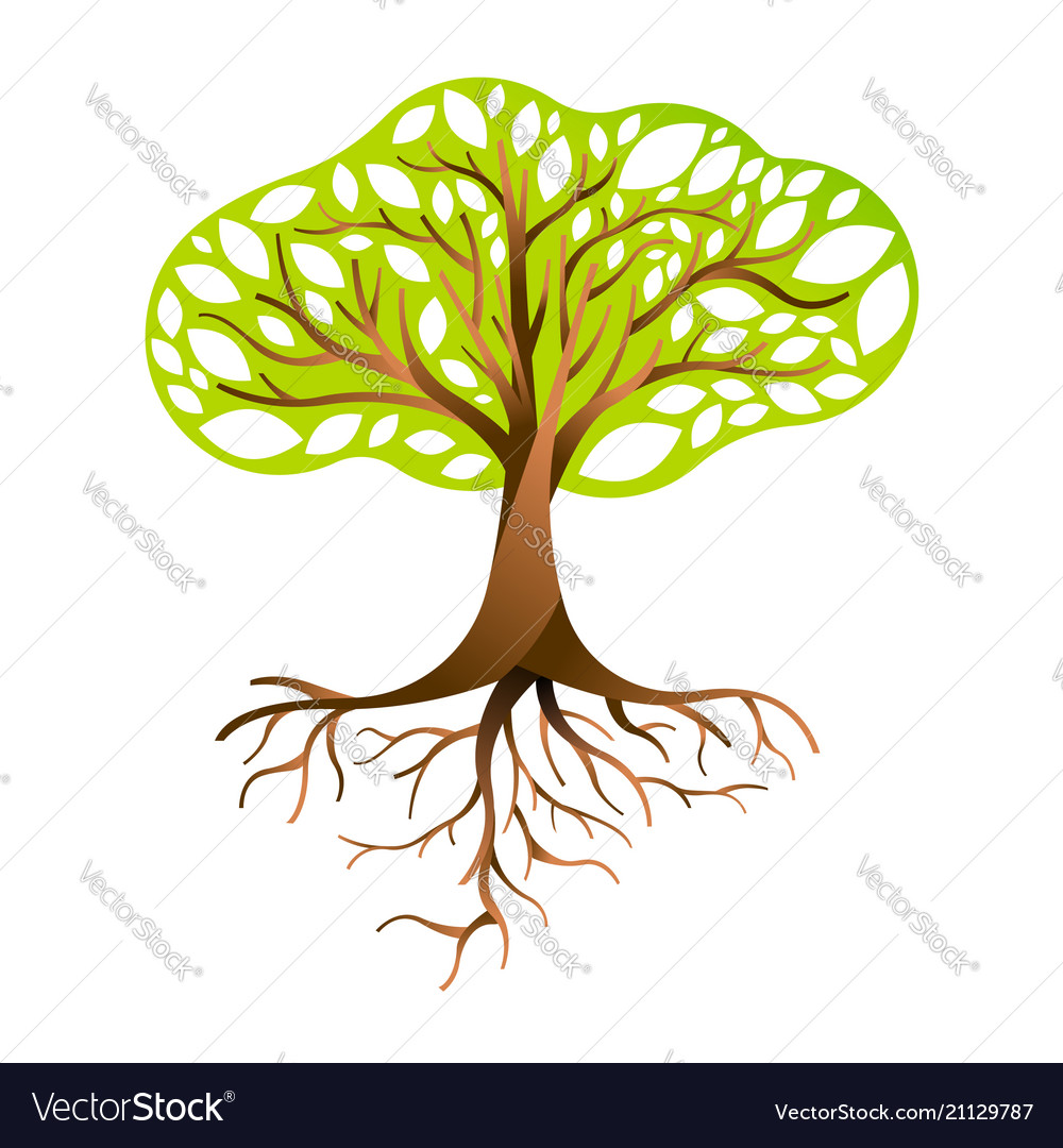 Green tree with branches and roots