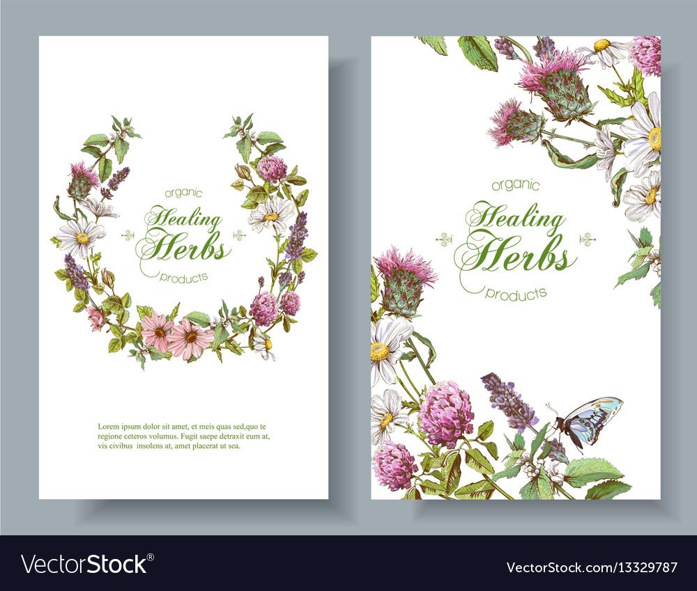 Herbal Banners Royalty Free Vector Image Vectorstock