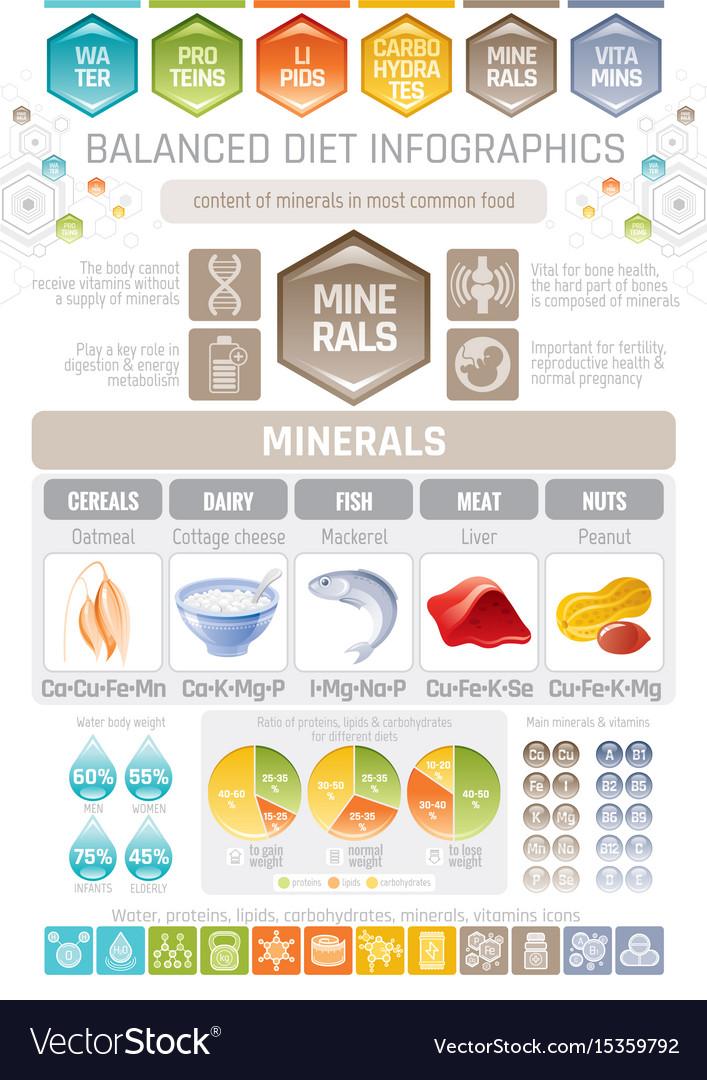 Minerals diet infographic diagram poster water