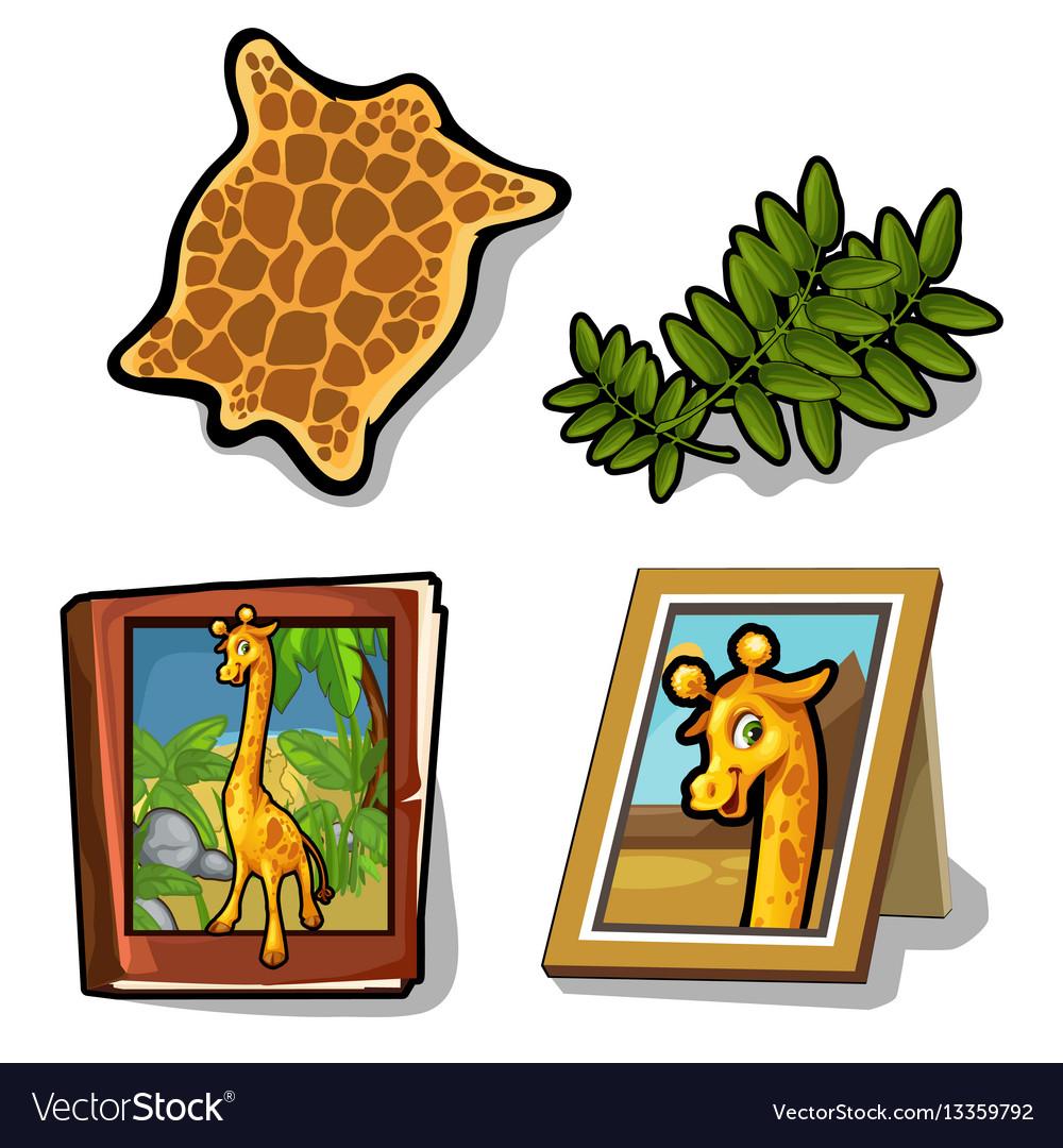 Set isolated of four item on giraffe theme