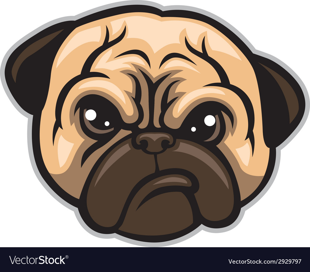 Pug dog head vector image