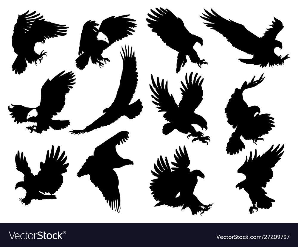 Set silhouette eagles collection flying