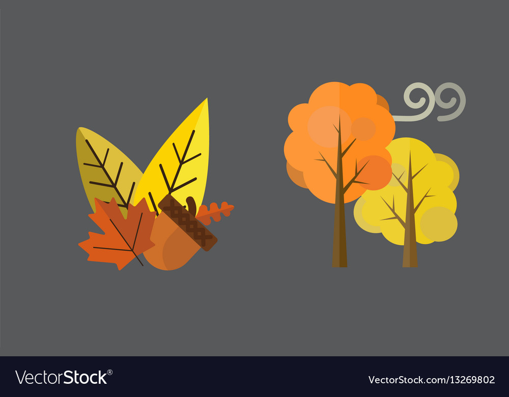 Fall acorn leaves tree rain clouds cold vector image