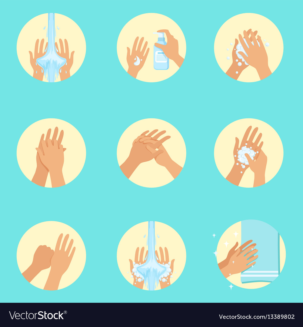 Hands washing sequence instruction infographic