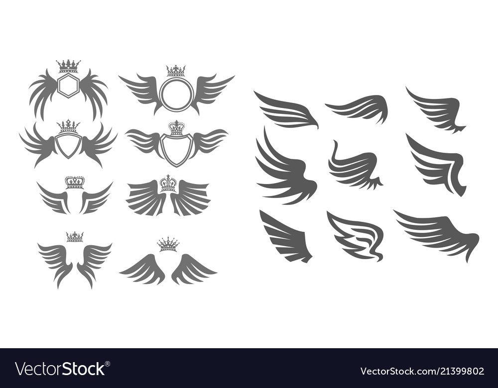 Wing collection set